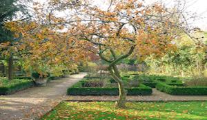 botanischetuinkralingen