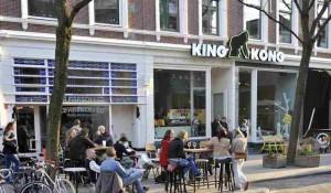 KingKong hostel Rotterdam