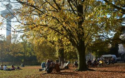 Slider Herfst Rotterdam Park